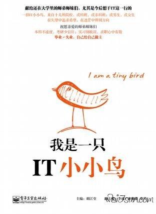 《我是一只IT小小鸟》(PDF下载)-麦氪搜(iMacso.com)